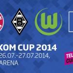 telekom_cup_2014_01
